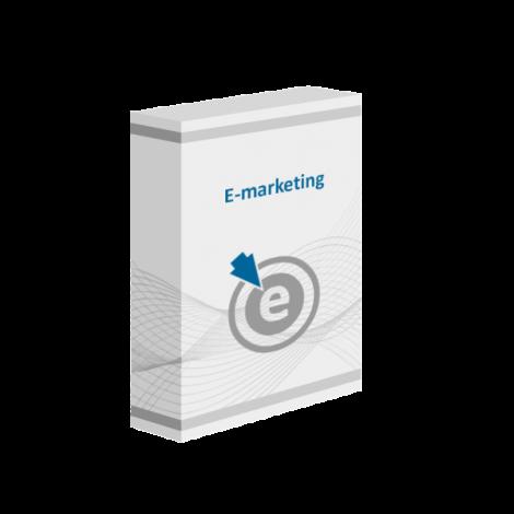 Szkolenie online E-marketing, jak promować firmę w Internecie